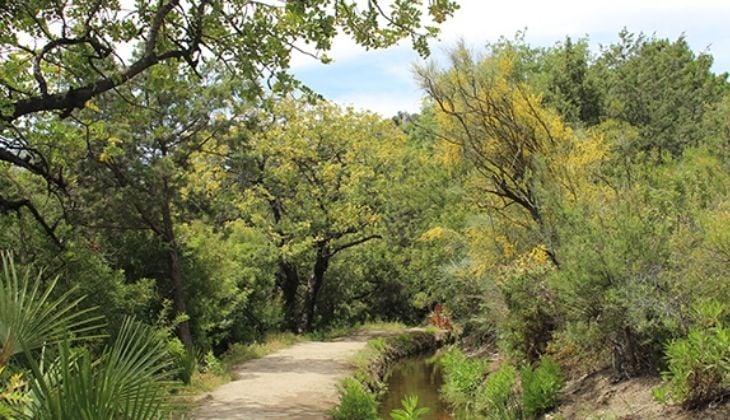 Routes through Sierra de las Nieves