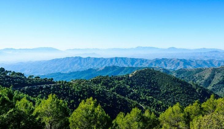 Weinroute Montes de Málaga