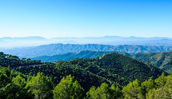 Винный маршрут в Монтес-де-Малага