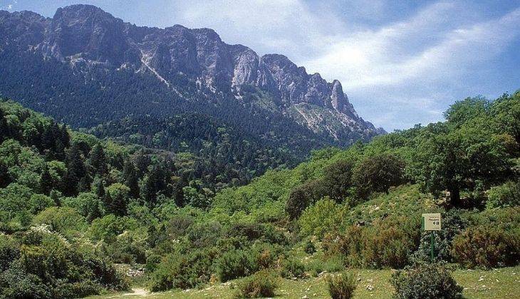 Sierra de la Grazalema, mountains in Malaga