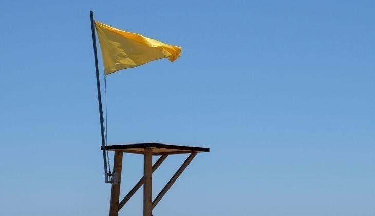 what the beach flags mean
