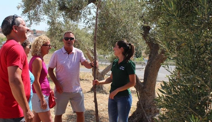 Aceites Molisur, aceite de oliva de  Málaga