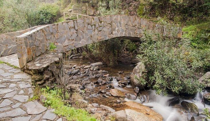 turismo cultural actividades Málaga