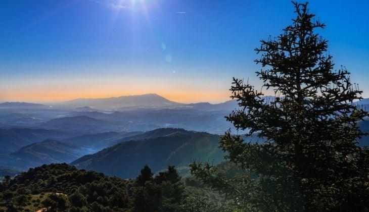 Visita el Parque Natural Sierra de las Nieves