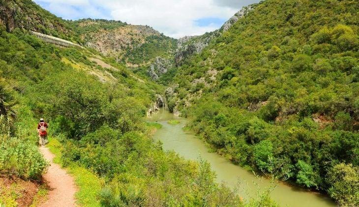Parque Natural de los Alcornocales, Valle del Guadiaro, Málaga