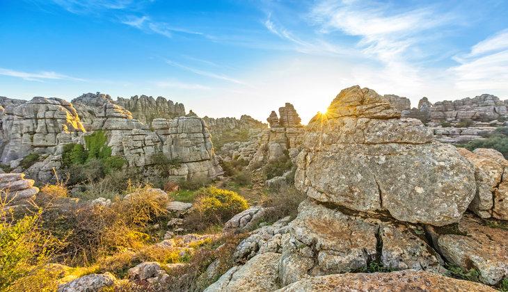 Ornithologischer Tourismus in der Provinz Málaga