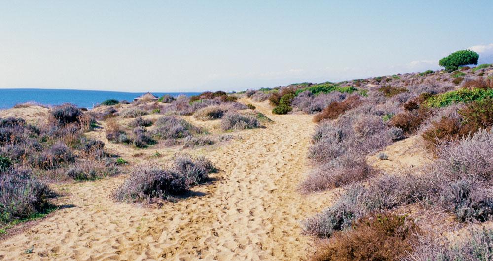 Practica El Naturismo En La Costa Del Sol