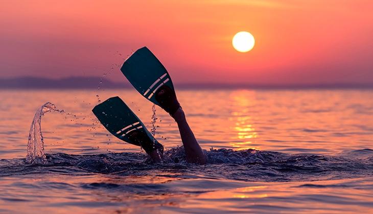 The best schools to practice diving at Costa del Sol